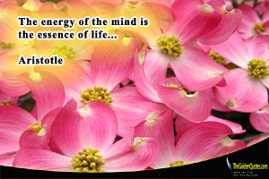 The Energy Of The Mind Is The Essence Of Lifeu2026 Aristotle Read More Quotes  From Aristotle